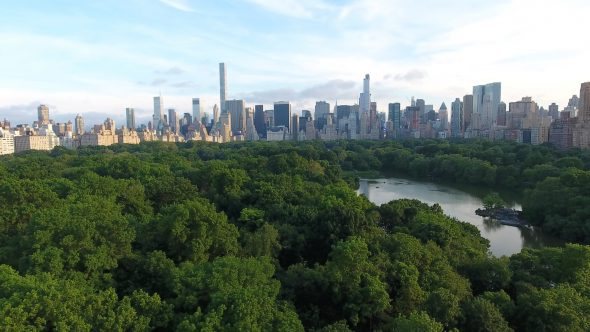 Aerial Drone Central Park, Manhattan NY Slow Zoom In