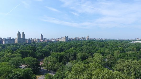 Aerial Drone Video Zoom out In Central Park, Manhattan NY 2
