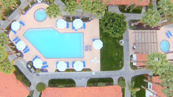 Resort Pool Beauties