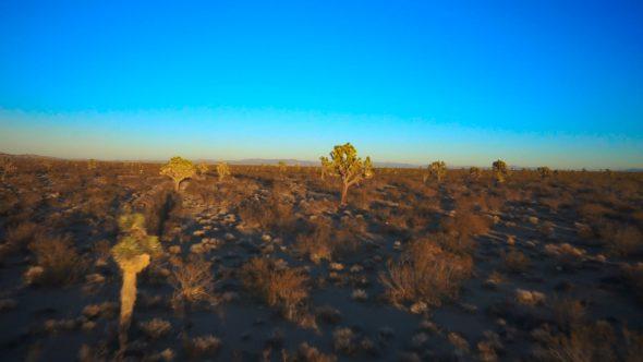 Desert Glide II Royalty Free Stock Drone Video Footage