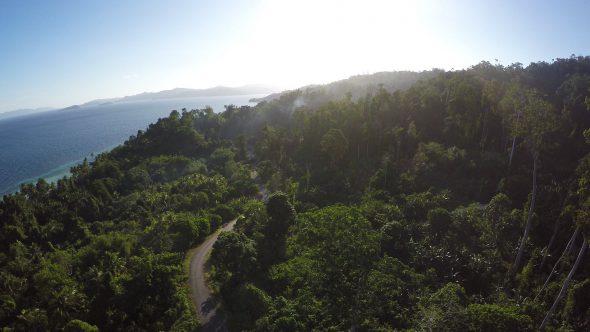 Sorong Jungle 3