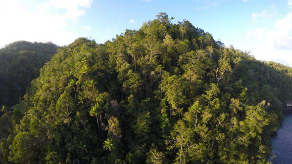 Raja Ampat Islands 14 Royalty Free Stock Drone Video Footage