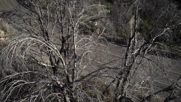 Mountainside Cyclist 5 Royalty Free Stock Drone Video Footage