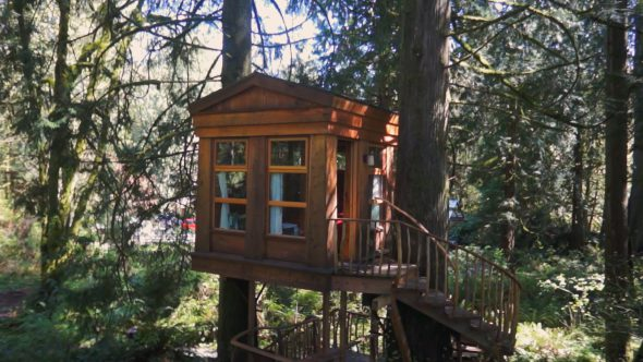 Tree House Zoom Out Royalty Free Stock Drone Video Footage