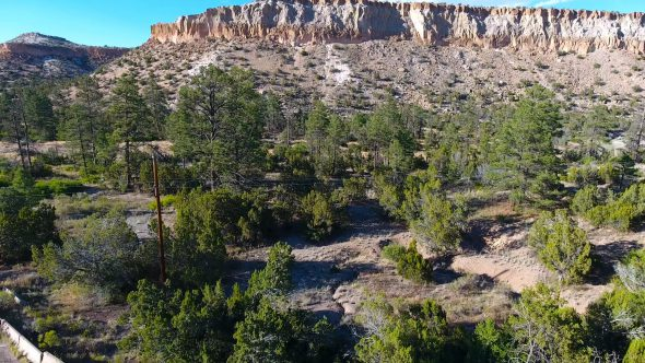 New Mexico Forest Canyon 2