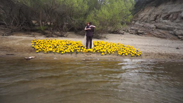 Newlywed on A bed of Yellow Flowers by The Lake