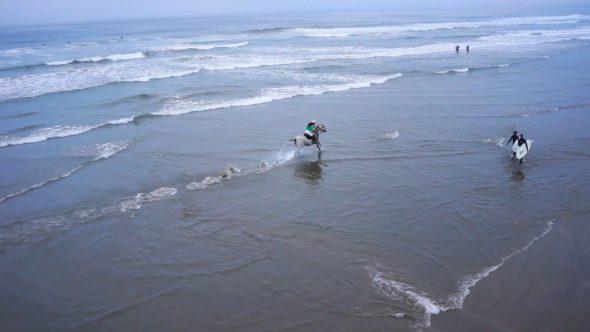Horse Running In Ocean I