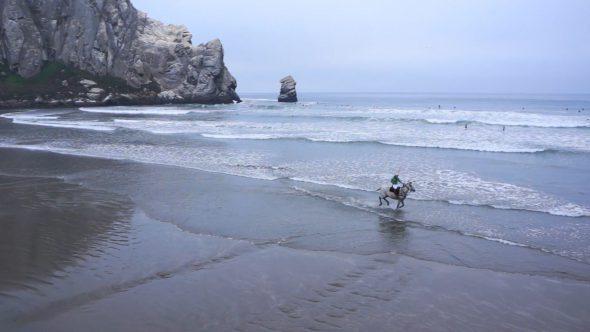 Horse Running In Ocean II