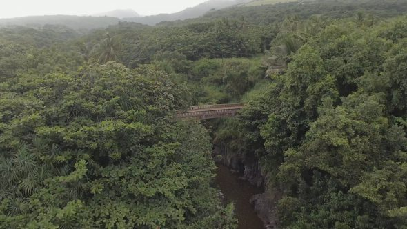 Maui Rocky Forest Bridge and River Falls