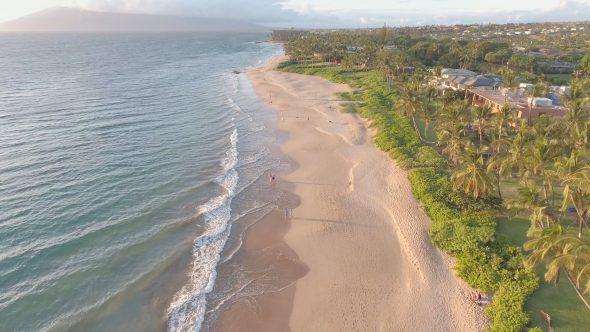 Maui Beach Forward Glide 1