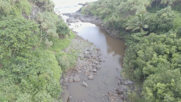 Maui Forest River Delta 3