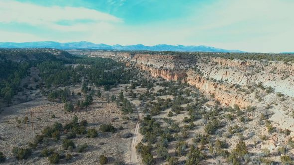 Steady Footage of the New Mexico Forest Canyon
