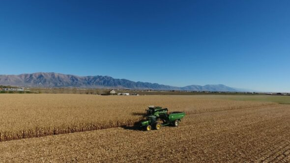 Farming and Harvesting Corn with a Tractor and Combine